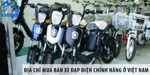 Địa chỉ mua bán xe đạp điện chính hãng giá rẻ ở Việt Nam