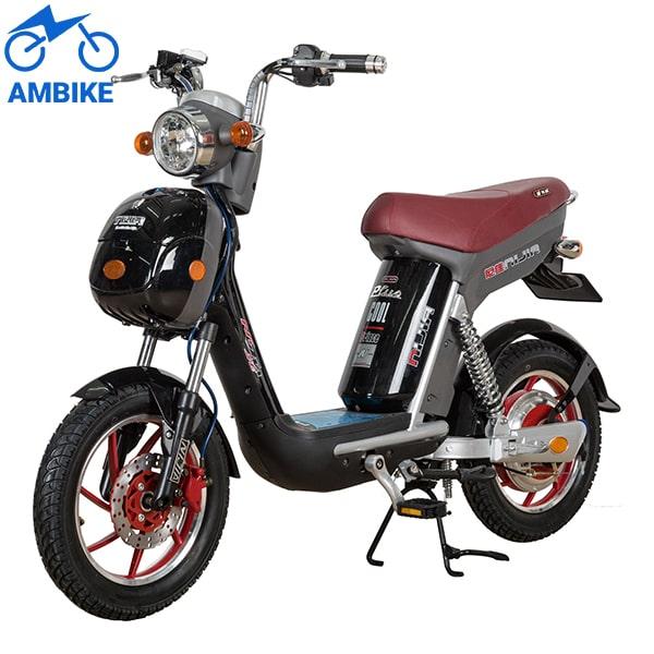 Xe đạp điện Nijia chính hãng