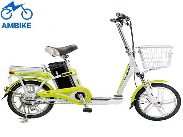 Xe đạp điện Aima ED315