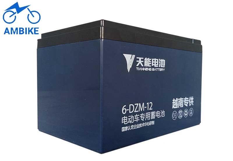 Ắc quy xe đạp điện Tianneng 48V – 12Ah