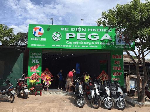 Xe điện Pega Tuấn Linh